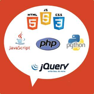 Web Application Expertise